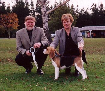 South Island Hound Club